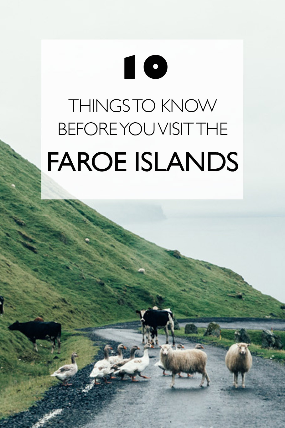10 Things to Know Before Visiting the Faroe Islands - The ...