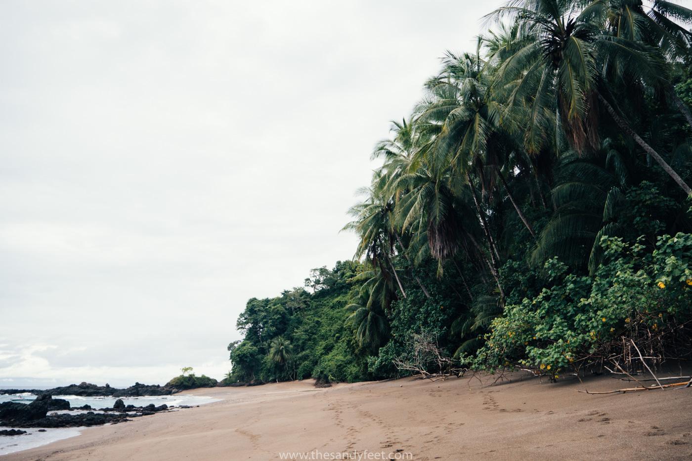 Volunteering | Volunteer overseas | Corcovado Costa Rica