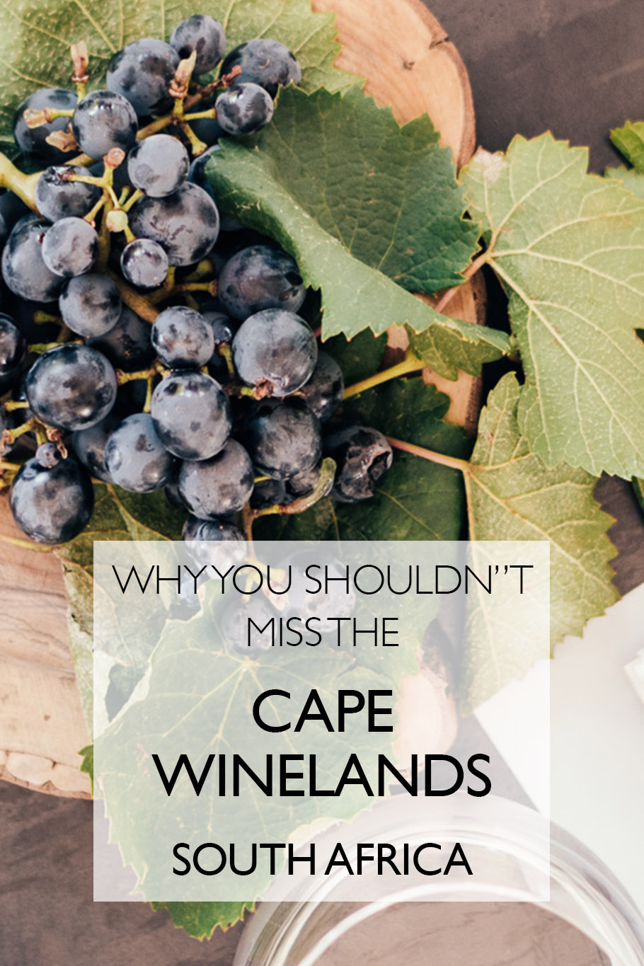 Why You Shouldn't Miss The Cape Winelands | Cape Town | Stellenbosch | Franschoek