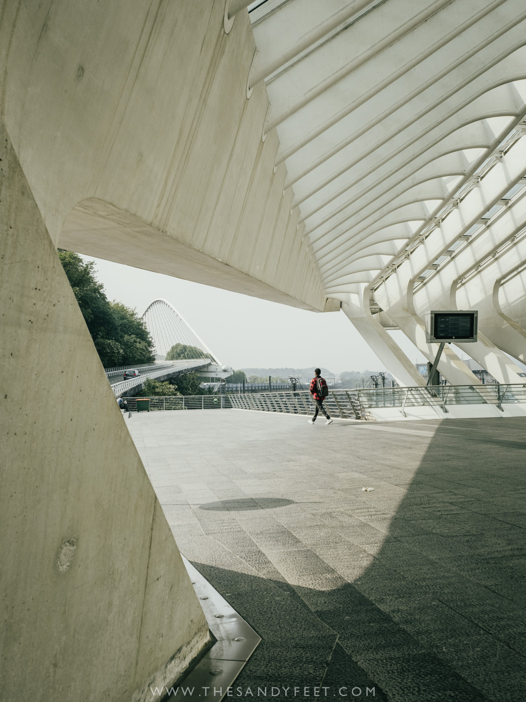 The Spectacular Liege-Guillemins Train Station | Top Things To Do In Liege in Belgium's Wallonia Region.