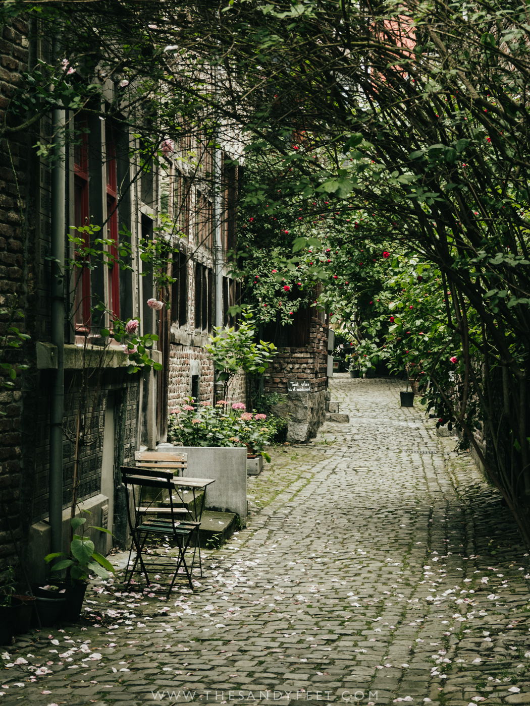 Exploring the impasse of Liege | Top Things To Do In Liege in Belgium's Wallonia Region.