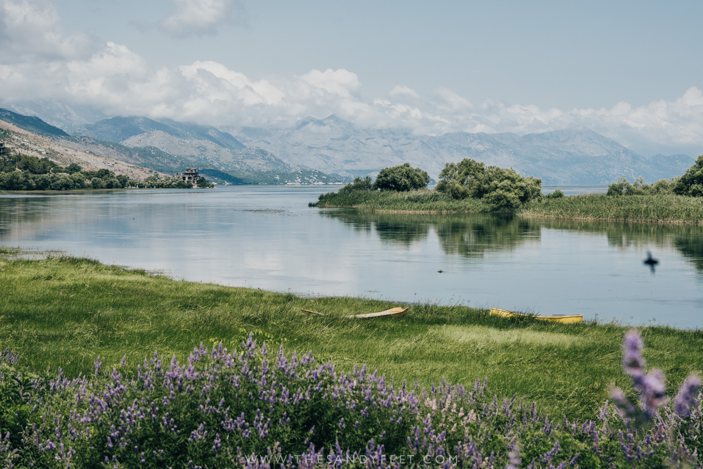 A Short Guide To Shkodra: Albania's Laidback Lakeside Town | The Best Things To Do In Shkodra, Albania
